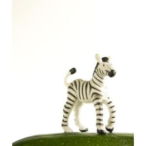 Artstar Zebra